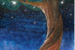 L'albero di luci